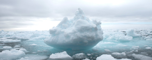 Pining for an Iceberg: Photography Instructor Greg Lock's Journey to the Arctic