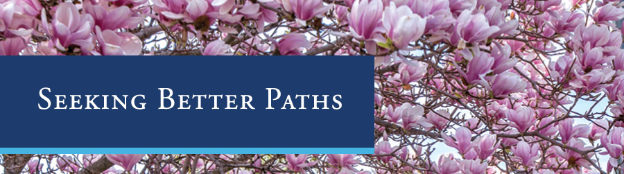 Seeking Better Paths | Appeal