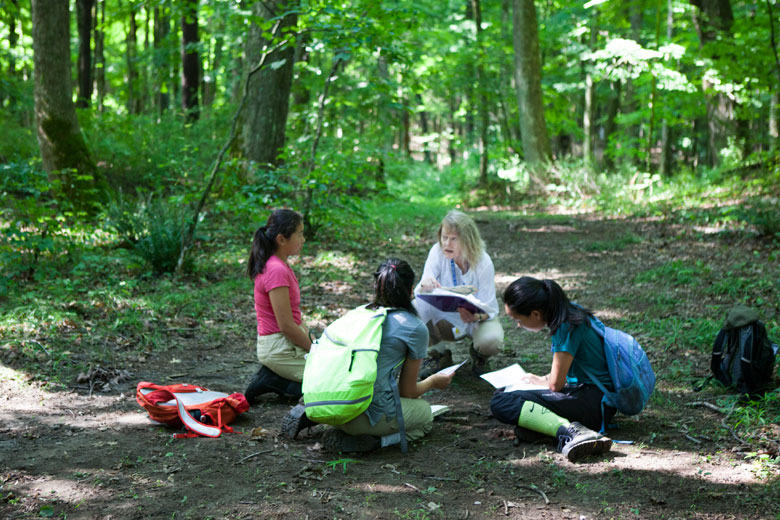 The Different Branches of Environmental Science by purpou ... |Environmental Science Fields